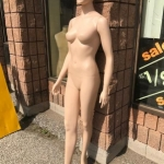 Female Maniquin in skin tone