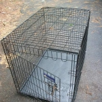 Dog crate - few sizes available